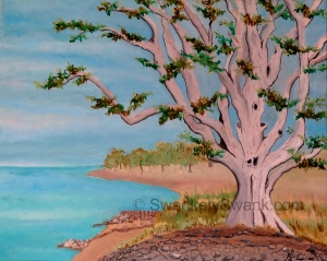 Lake Erie Tree Oil 16x20""