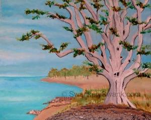 """Lake Erie Tree Oil 16x20"""""""