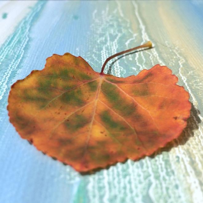 Aspen leaf web