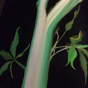 hemp stalk fiber