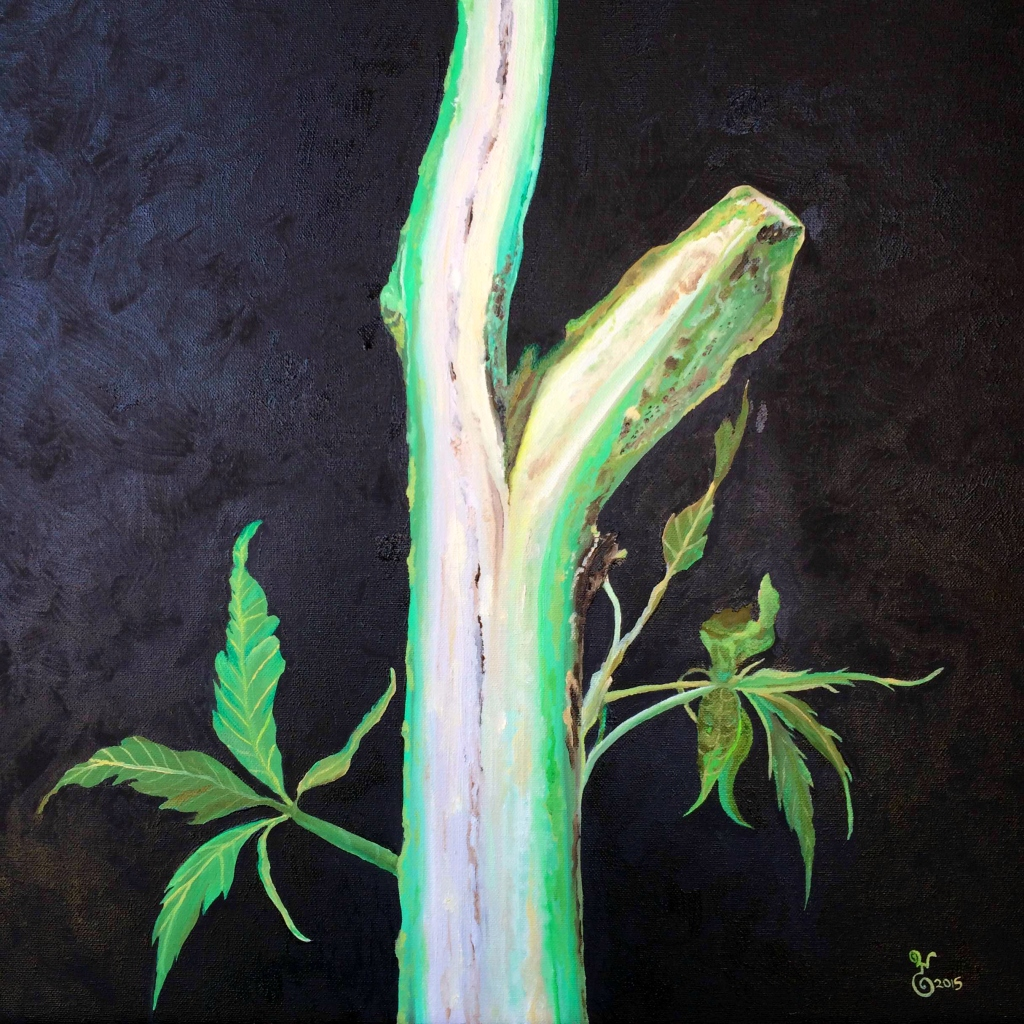 """Hemp Stalk"" oil 20x20"""